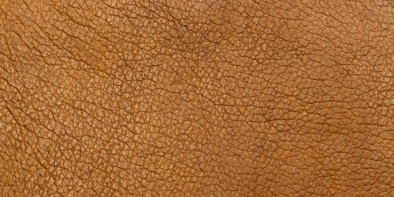 Leather Allergy | New York Allergy and Sinus Centers