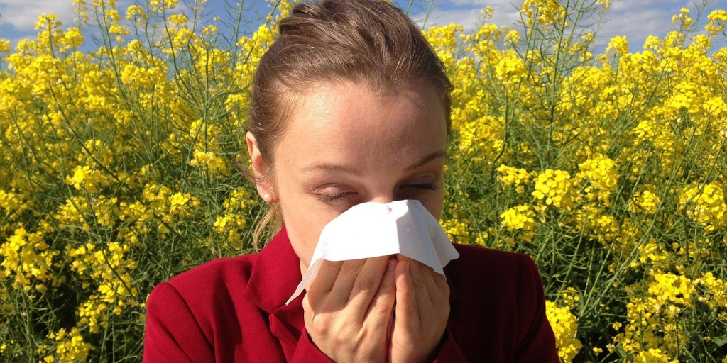 Five Most Common Allergies Feature Image