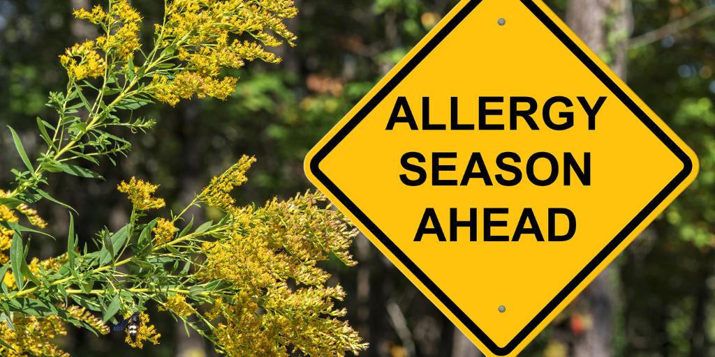Preparing For Allergy Season 2021 Feature Image