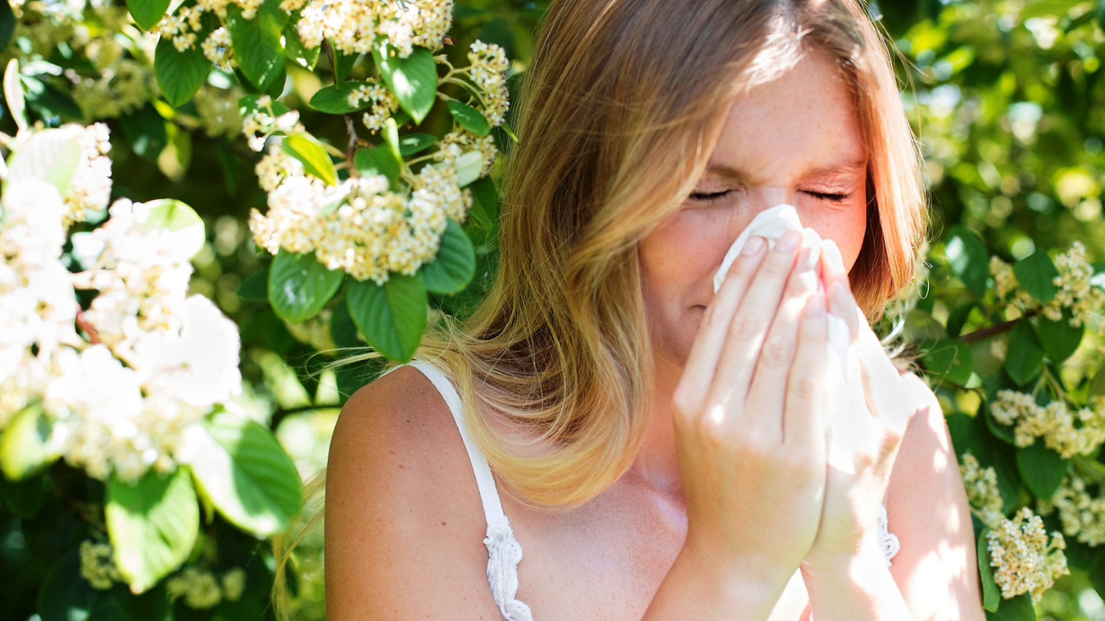 Here Is What You Need to Survive This Allergy Season Feature Image