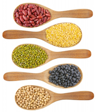 Soy Allergy - cross-reactions between soy and other legumes are possible